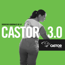 Castor. Un proyecto de Motion Graphics, Br, ing e Identidad, Diseño gráfico, Diseño Web y Redes Sociales de Levulevú - 24.09.2019