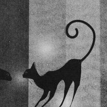 Gatos. Un proyecto de Ilustración, Ilustración vectorial, Ilustración digital e Ilustración infantil de Jimi Macías - 29.10.2019