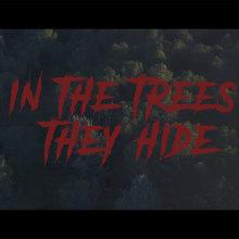In the trees they hide. Um projeto de Vídeo de Sebas Oz - 08.01.2020