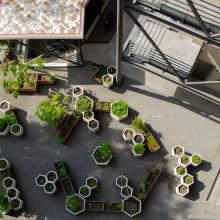 HUERTO URBANO EN EDIFICIO CIRCULO FRANCÉS. Un progetto di Architettura, Interior Design, Paesaggismo e Interior Design di EN·CONCRETO - 09.01.2020