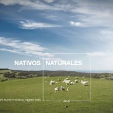 NUEVA WEB ASAJA. Un proyecto de Dirección de arte, Diseño gráfico y Creatividad de Oscar Gómez Trigo - 21.02.2020