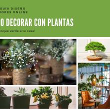 Decoracion de Interiores con plantas. Un proyecto de Diseño de interiores de Angela Vilchez - 20.03.2020