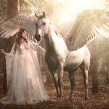 Titania & Pegasus. Un proyecto de Fotografía, Fotografía de estudio y Fotografía artística de Alexandra Martín García | ArtDrómeda - 17.05.2017