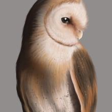 My project in Naturalist Animal Illustration with Procreate course. Un proyecto de Bellas Artes, Creatividad y Pintura digital de sarleej - 05.04.2020