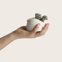 Creation de una maceta con autorriego. A Design, Industrial Design, Interior Design, Product Design, and Ceramics project by Pablo Jimenez - 04.12.2020