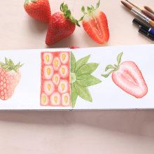 Mini diario naturalista. Un proyecto de Diseño gráfico, Creatividad, Pintura a la acuarela e Ilustración botánica de Lara Izquierdo - 18.04.2020