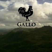 Azeite Gallo. Un proyecto de Publicidad de Andreia Ribeiro - 04.08.2009