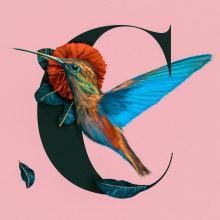 Textile Prints with Digital Techniques - Colibri Bird. Un proyecto de Ilustración digital de Sebastian Pandelache - 06.05.2020