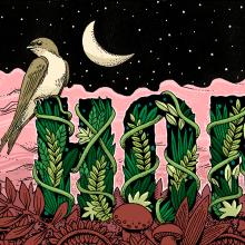 Editorial illustrations. Um projeto de Ilustração, Design editorial e Desenho de Pedro Correa - 14.05.2020