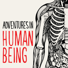 Cover illustration and typography for Adventures in Human Being by Gavin Francis. A Illustration, T und pografie project by Sarah King - 11.07.2017