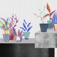 Series ilustradas. Um projeto de Ilustração, Colagem, Desenho e Ilustração botânica de Bengoa Vázquez - 10.06.2020