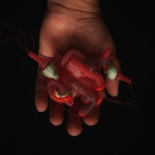 Parasitismo Existencial - Bestiario Joyería Contemporánea. A Design, H, werk, Schmuckdesign, Skulptur, Kreativität und Concept Art project by Rita Soto-Ventura - 11.06.2020