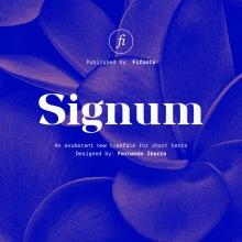 Signum: un sistema de letras a partir de módulos.. Un progetto di Design, Packaging, Tipografia, Lettering , e Design tipografico di Fernando Ibarra - 16.06.2020