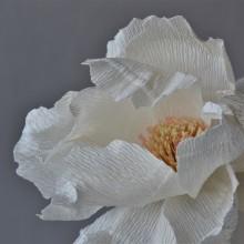 Single paper flowers. A H, werk, Kartonmodellbau und Dekoration von Innenräumen project by Eileen Ng - 21.07.2020