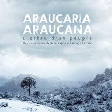 Araucaria Araucana - sound postproduction & music. Un proyecto de Postproducción, Sound Design, Postproducción audiovisual y Producción musical de Rafael Bernabeu García - 01.03.2017