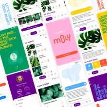 Mi Proyecto del curso: Diseño de una aplicación móvil. A UI / UX project by Marcela Ordóñez Sánchez - 31.08.2020