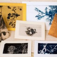 Mi Proyecto del curso: Cianotipia: técnica de impresión con luz. A Fine Art project by Elena Rodríguez Fajardo - 10.10.2020