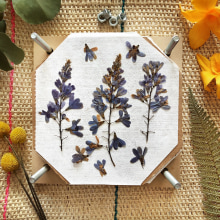 The pressed flowers lab by Happy Green Family. A Kreativität project by Happy Green Family - 21.10.2020