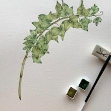 Mi Proyecto del curso: Ilustración botánica con acuarela. A Watercolor Painting project by Carla - 10.27.2020