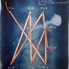 """""""Cianotipia Crónica"""" - Mi Proyecto del curso: Cianotipia: técnica de impresión con luz. Un projet de Illustration , et Photographie artistique de mariana mattos - 23.10.2020"""