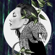 Plight of the Pangolin Illustration. A Illustration, Digital illustration, Portrait illustration, Portrait Drawing, and Digital Drawing project by Amy Pearson - 11.10.2020