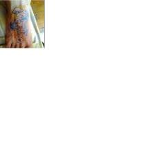 Meu projeto do curso: Tatuagem para principiantes. Un proyecto de Fotografía publicitaria de Monica Regina Doria Luciano - 28.11.2020