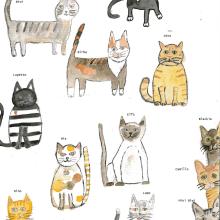 Un miscuglio di gatti rossi, frutta parlante e insetti mostriciattolo. Un proyecto de Ilustración y Creatividad de Silvia Biella - 16.12.2020