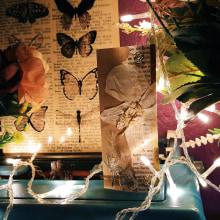 Projeto do Curso: Marcador de páginas. A Kartonmodellbau und Botanische Illustration project by Jeyse Aquino - 28.12.2020