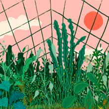 Invernaderos. Um projeto de Ilustração de Gisele Murias - 03.01.2021