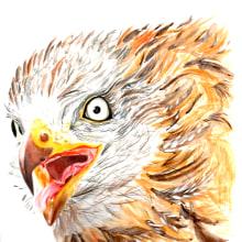 Milano Real en las alturas. Mi Proyecto del curso: Ilustración naturalista de aves con acuarela. A Illustration project by Loli Crespo - 01.14.2021