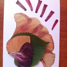 Mi Proyecto del curso: Técnicas básicas de prensado botánico. A L und schaftsbau project by victoriafm92 - 29.01.2021