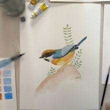 Proyecto Aves en Acuarela. Um projeto de Artes plásticas e Pintura em aquarela de Noemi Alvarenga - 08.02.2021