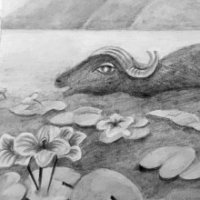 My project in Artistic Illustration Techniques with Graphite Pencils course. A Illustration, and Pencil drawing project by Dimitra Kountiou - 02.08.2021