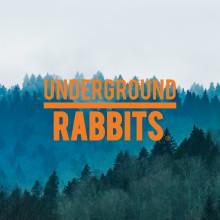 Resumen del curso: Campañas para Underground Rabbits. Un progetto di Marketing digitale di Albert Martín - 09.02.2021