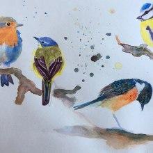 four little birds. Un progetto di Pittura ad acquerello di claudia.martinowski - 06.03.2021