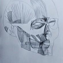 Minhas atividades no Curso Desenho Anatômico Da Cabeça Humana. Un proyecto de Dibujo anatómico de Jordana Borchartt Quevedo - 19.03.2021