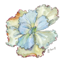 My project in Botanical Sketchbooking: A Meditative Approach course. A Illustration, Aquarellmalerei und Botanische Illustration project by Lapin - 31.03.2021