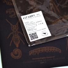 Entomología General.. Un proyecto de Diseño, Ilustración y Diseño de carteles de Fabry Salgado - 05.03.2021