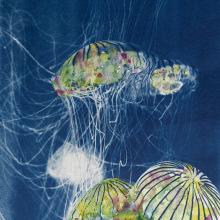 Mi Proyecto del curso: Cianotipia: técnica de impresión con luz. Um projeto de Fotografia artística de Tatiana Oller Ramirez - 02.12.2020