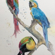 Mi Proyecto del curso: Acuarela artística para ilustración de aves. A Illustration project by Maria Mazariegos - 04.25.2021