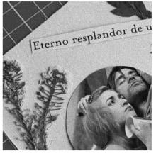 Mi Proyecto del curso: Técnicas básicas de prensado botánico. A Collage project by Daniela Escalona - 26.04.2021