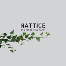 NATTICE, de la naturaleza al diseño. . A Architektur, Innenarchitektur und 3-D-Design project by Nayeli Martínez - 22.02.2021