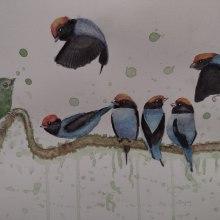 Meu projeto do curso: Técnicas expressivas de aquarela para ilustração de pássaros. Un proyecto de Ilustración, Pintura a la acuarela, Dibujo realista e Ilustración naturalista de Marinês Eiterer - 24.06.2021