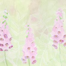 Mein Kursprojekt: Negative Aquarelltechniken zur botanischen Illustration. A Illustration, Watercolor Painting, and Botanical illustration project by Sylvia Haendschke - 06.29.2021