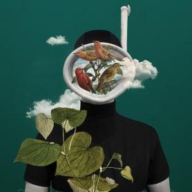 Bucear en el mundo del collage de la mano de Gabriela Sánchez