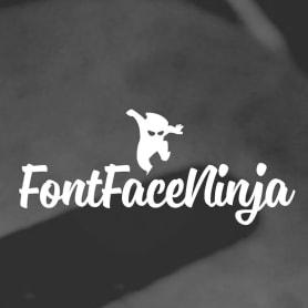 Fontface Ninja: el plugin para identificar tipografías