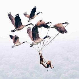 Luisa Azevedo desafía a la imaginación con sus fotografías