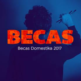 Becas Domestika 2017. Participa y gana un año de aprendizaje.