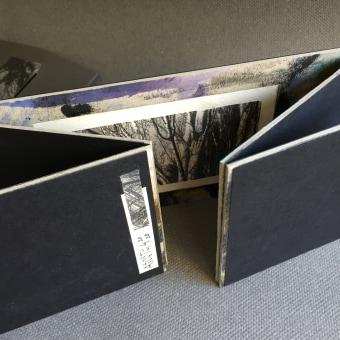 Cartón de desecho: tríptico origen de las bases de los 'Arboretums'. Un progetto di Rilegatura di Susana Dominguez Martin - 21.10.2020