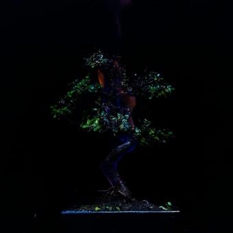 THE VIRTUOSOS: THE CHEF | Xiaomi Studios. Un proyecto de Publicidad, Música, Audio, Fotografía, Cine, vídeo, televisión, Dirección de arte, Artesanía, Bellas Artes, Cocina, Diseño gráfico, Postproducción, Escenografía, Cine, Sound Design y Creatividad de Jiajie Yu Yan - 13.11.2020